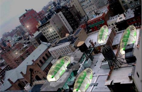 Schlauch auf dem Dach