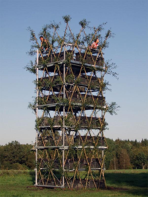 gewachsene Architektur